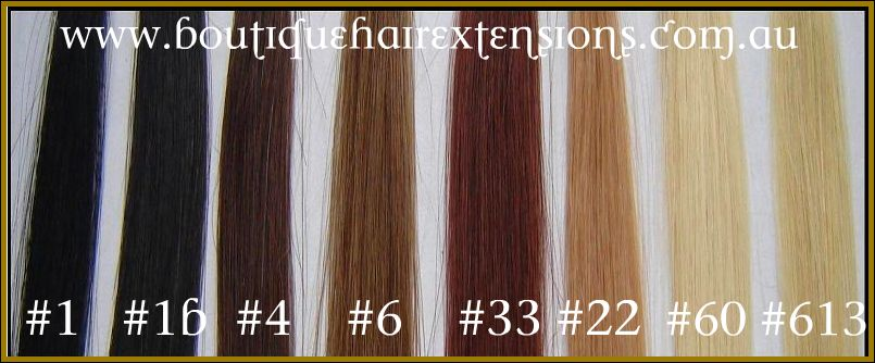Clip in hair extensions 100 human extensions clip in hair extensions 100 human hair 20 pmusecretfo Gallery